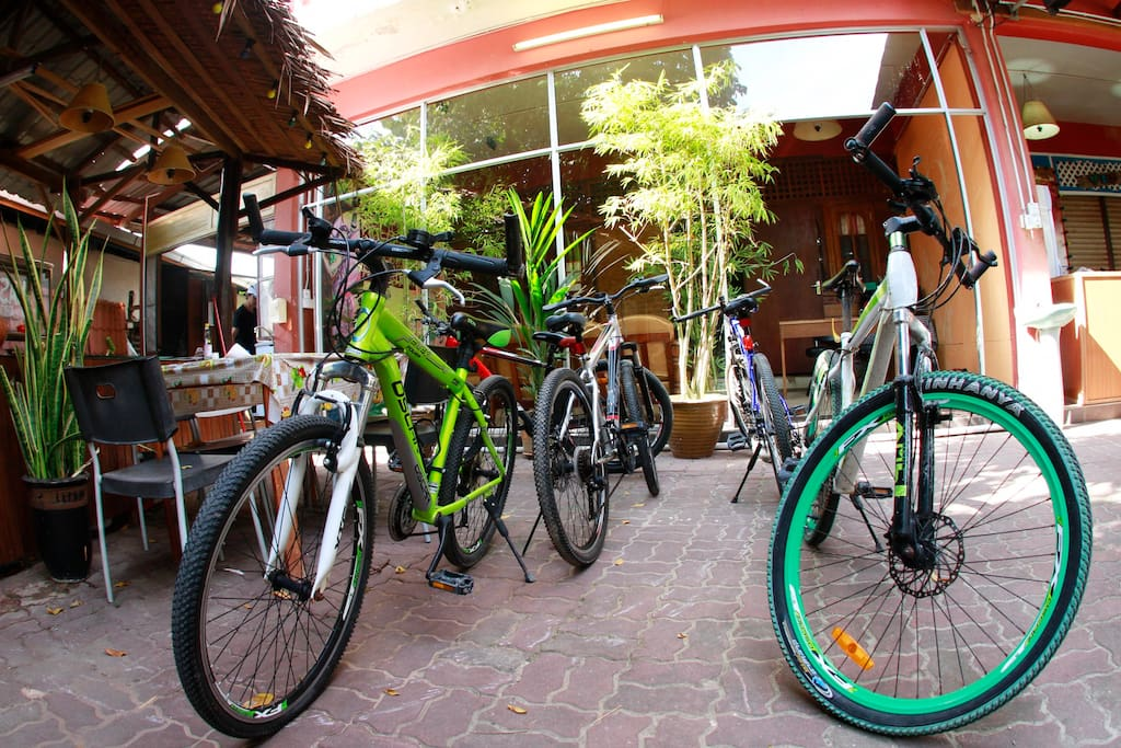 Bicycles rental available.