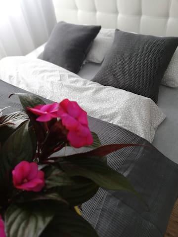 Apartament Centrum Charlotte
