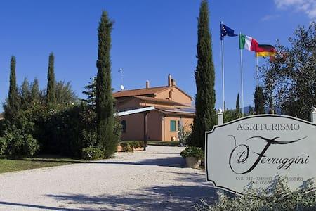 Agriturismo nel cuore della Toscana - Bolgheri