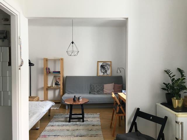 Przytulne studio w ścisłym centrum Warszawy