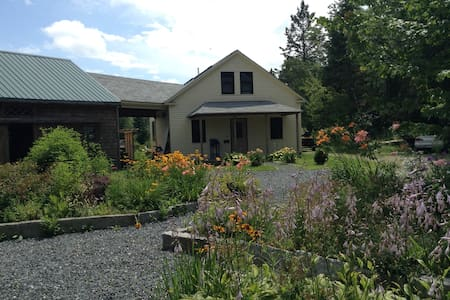 Grandma Betty's house - Ház