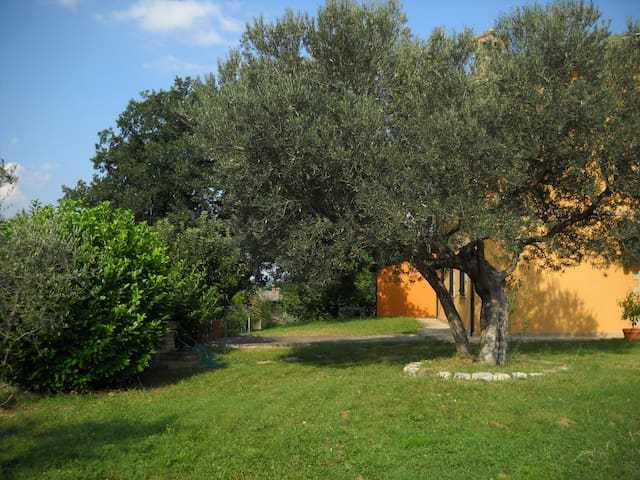 b&b nell'immediata periferia - San Severino Marche