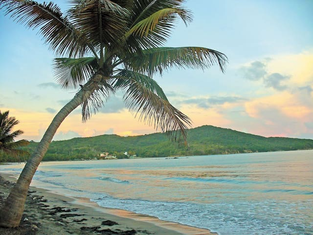 IDEALLY LOCATED © COZY TROPICAL SUITE - Luquillo - Leilighet