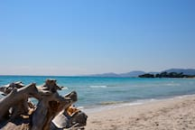 The 2,5km stretched Palombaggia beach down the Villa Ghjiasepina with its soft white sand ...