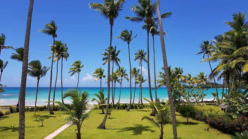 Beachfront apartment in Playa Bonita