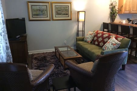 Downtown Relaxation and Style,#7 - Greenville - Townhouse
