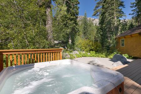 Alpine Adventure - Luxury 4BR + Hot Tub - Alpine Meadows