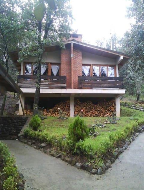 Cabaña Los Bosques- Habitación #22 para 2 pers.