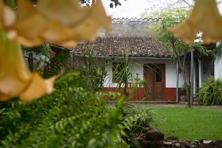 La Casa de Xico, B&B - Aamiaismajoitus