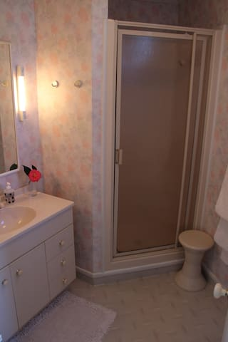 Own bathroom with shower and toilet