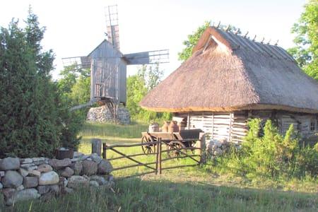 A very nice little farmstead. Viking 3 - Rannaküla