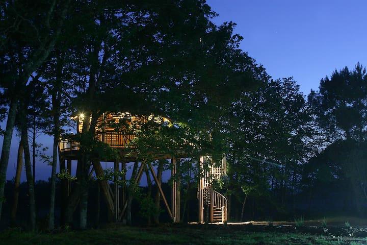 Cabanes & Spa - capdrot - Ağaç Ev