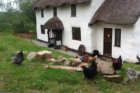Cuckoo Farm The Owl Room - Modbury - Hus