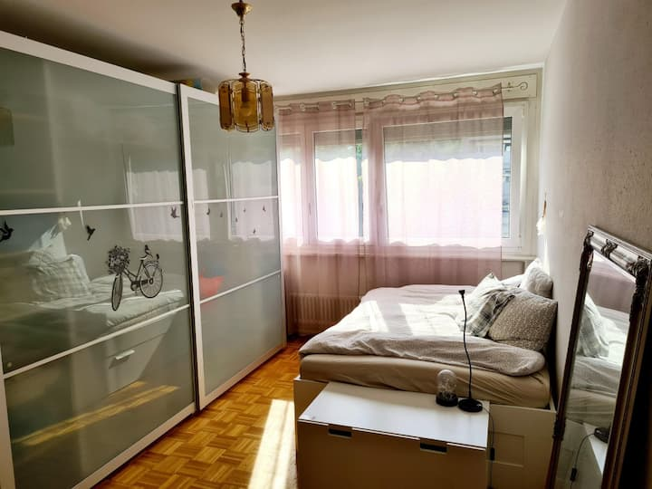 Cosy apartment in Geneva, 20 mn from downtown.