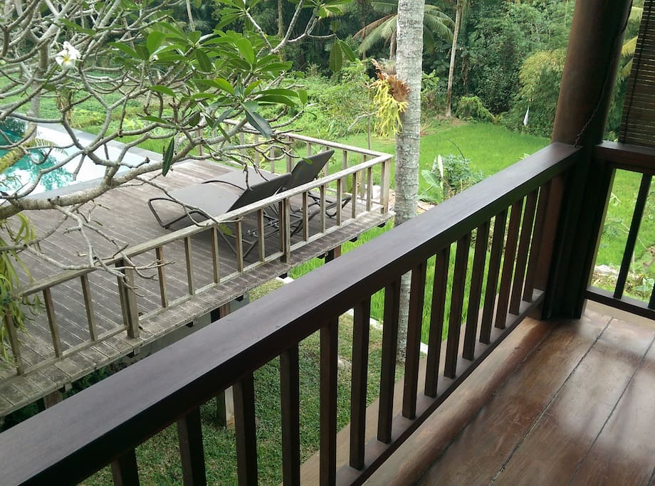 View from the wood house veranda