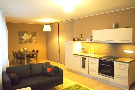 Cozy bright studio on Barrandov - Prague