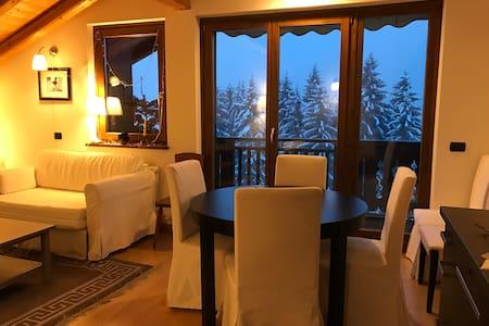 comfort di montagna - Province of Trento - Appartamento