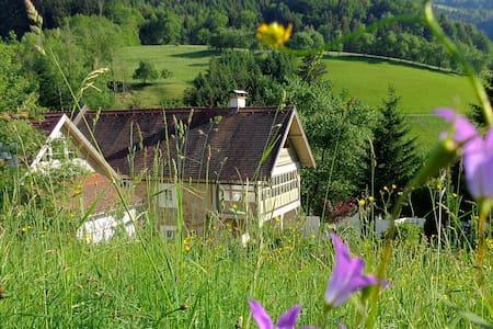 Großkandlerhaus vintage suite - Unterdambach