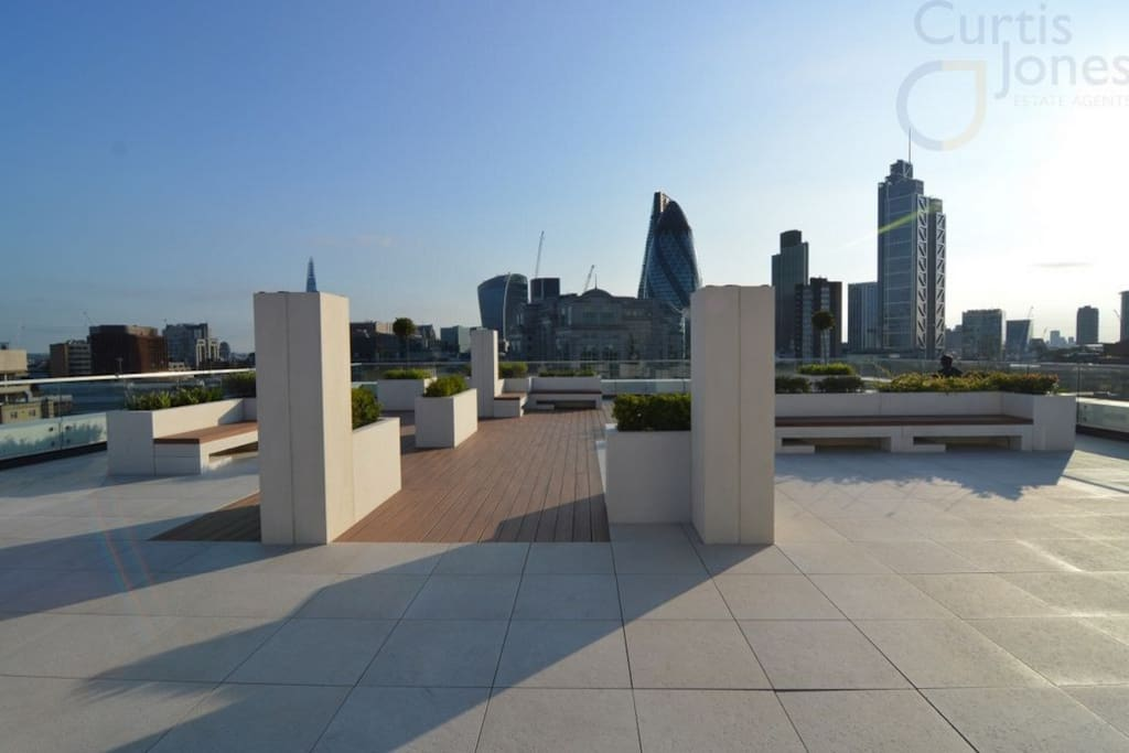 Roof top garden - day view