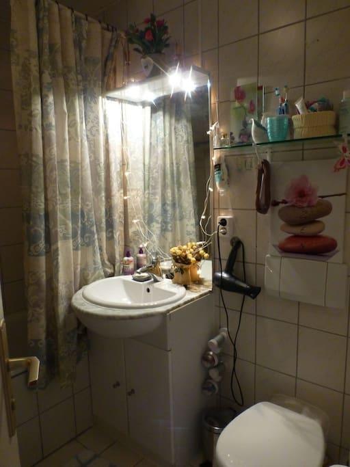 Shared toilet with bath/shower.