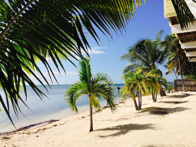 Oceanfront, Private Beach, Beach Cottage w/Kayaks - Islamorada - Hus