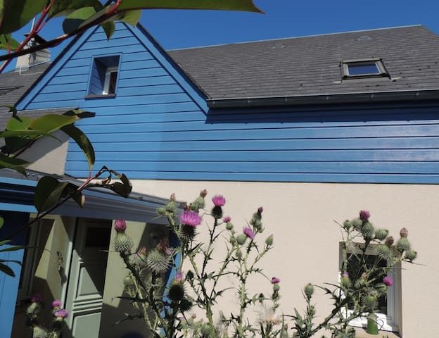 La maison bleue du vallon - Donville-les-Bains - Hus