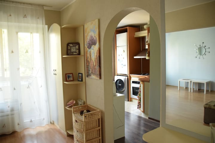 Fresh and cozy apartment - Rīga - Apartment