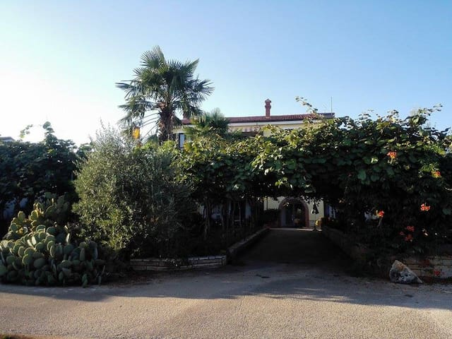 App in a lovely green paradise (4p) - Novigrad - Appartement