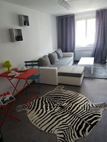 Apartment in a lively part of the city