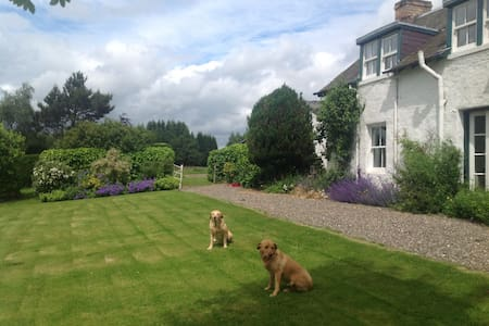 Tomlea B&B - Tartan & Yellow Rooms - Blairgowrie - Bed & Breakfast