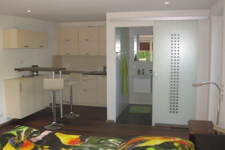 Studio mit separatem Eingangstür - Rheinfelden - Condominium - 2