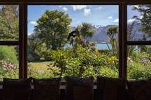 View over lake Wakatipu with garden in the front.