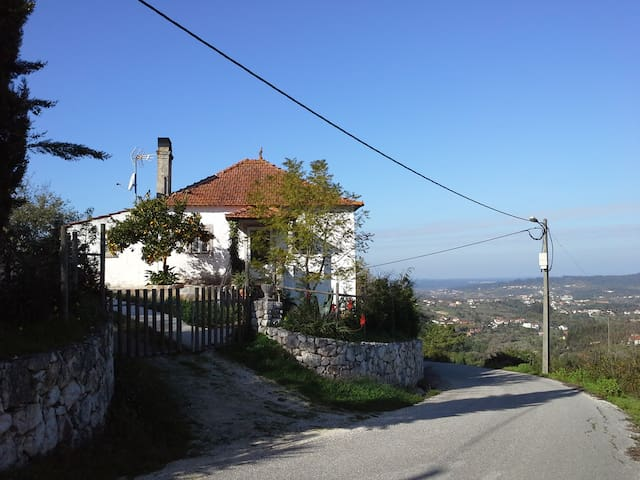 1938 Vintage Country House - Pombal / Pombal / Leiria - House