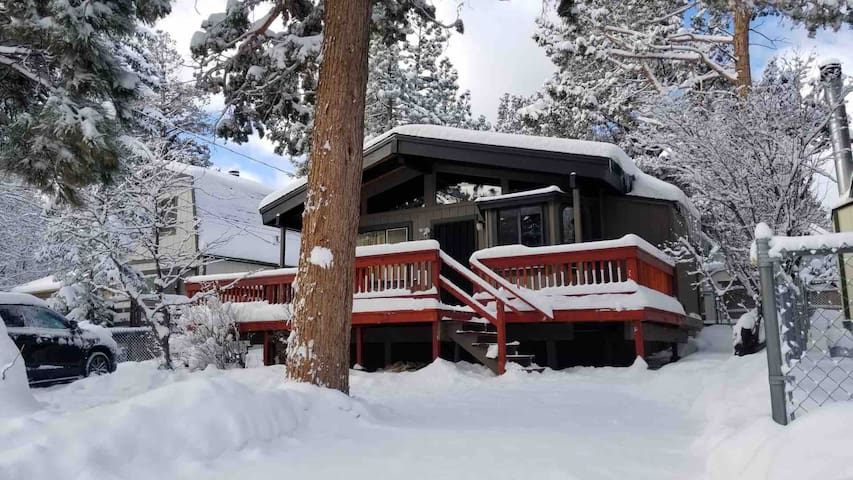 Bearadise Cabin