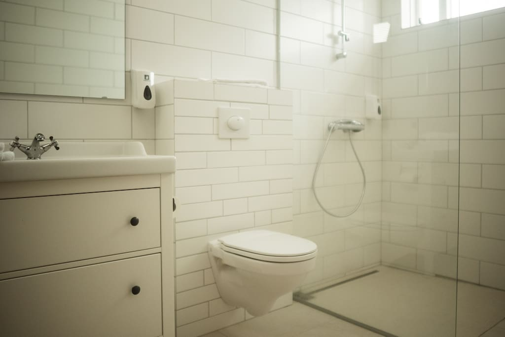Newly renovated bathroom with great walk in shower