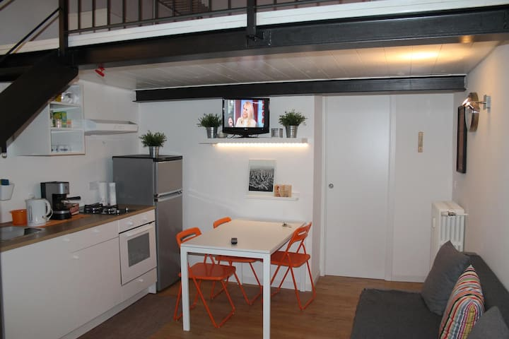 Little Loft near porta Susa station and subway - Torino - Loft