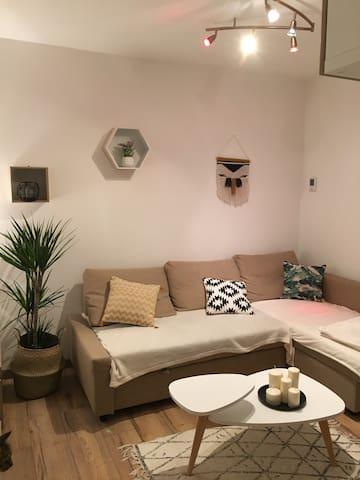 Charmant T2 dans belle demeure - Tours - Flat