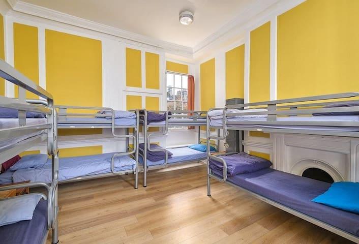 12 Bed Mixed dorm