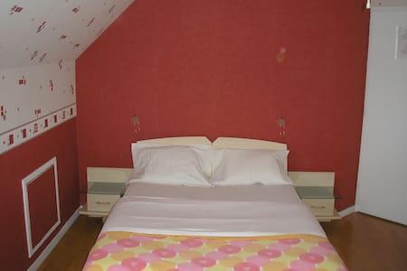 Trés grande chambre privée avec salle de bain - Chanteloup-les-Vignes - 独立屋
