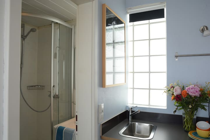 left from the kitchenette there is your bathroom with shower
