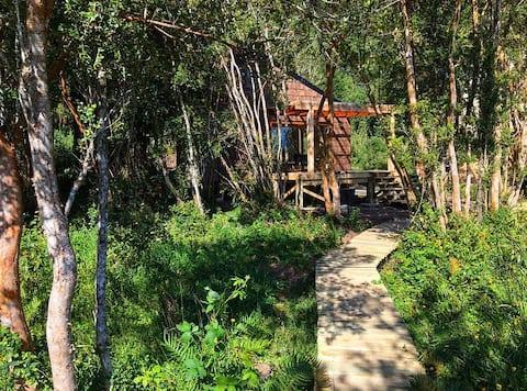 Domek nad morzem w rodzimym lesie-Ralun-Pto Varas
