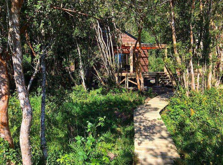 Cabaña orilla mar en bosque nativo -Cochamó