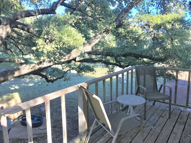 Dogs Welcome!  Private Room on 3 Fenced-in Acres - Round Rock - Loft