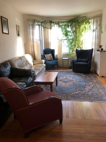 VERY spacious, quiet, Brookline retreat