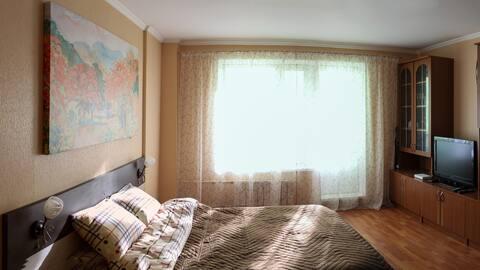 Уютная однокомнатная квартира в Тучково