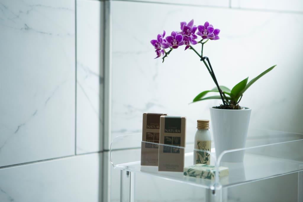 Forniamo shampoo, balsamo, bagno schiuma, saponette, cuffietta, vanity kit e la crema per il corpo