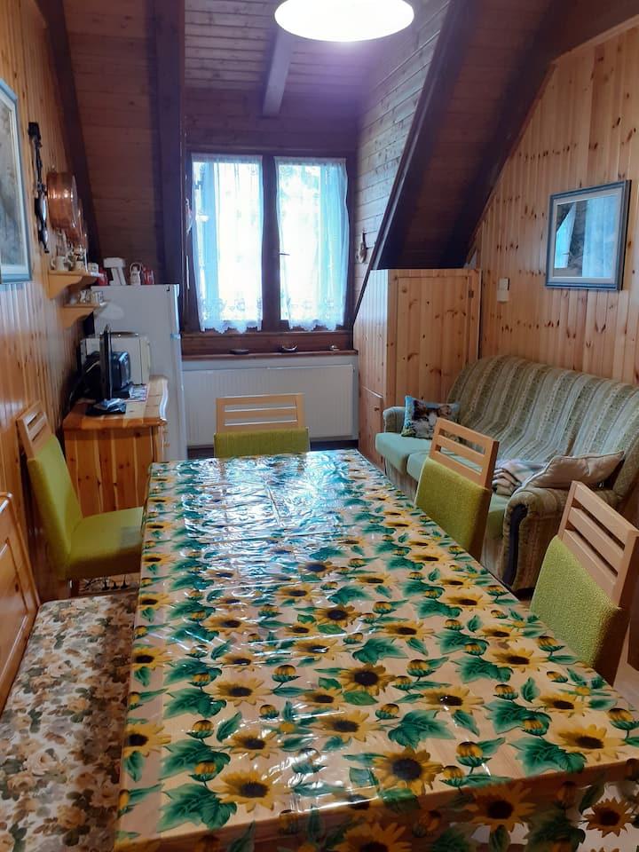Accogliente e confortevole appartamento a Tarvisio