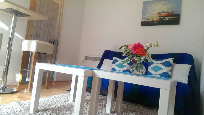 Lovely apartment at great location - Sarajevo - Apartment