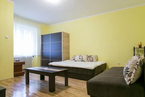 Apartment accros BELGRADE FAIR (near city center)