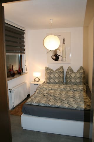 Nice and comfortable apartment near city centre